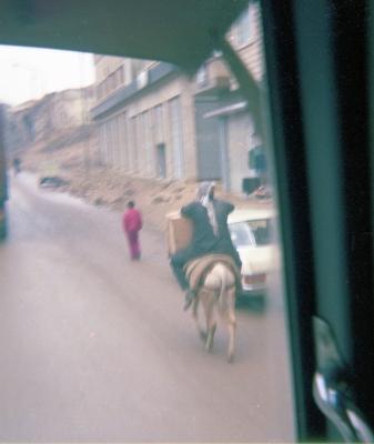 Syrian riding donkey uphill, Hama City